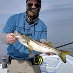 Snook fishing with Capt. Mike