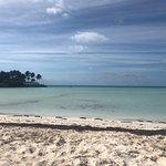 Ảnh về Taylor Bay Beach