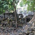 more trees/ruins