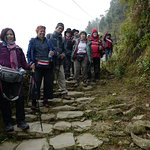 Photo de Mission Eco Trek - Day Tours