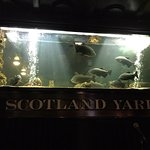 Foto de Scotland Yard