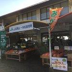 Michi No Eki Ipponmatsu Observation Deck Garden照片