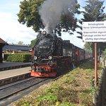 Einfahrt der Brockenbahn in Wernigerode/Westerntor. Für uns, als Dampflok- und Schmalspurbahn-Fans ein absoluter Höhepunkt.