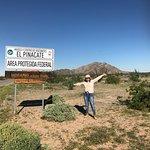 Decidí publicar estas fotos por qué cuando buscaba imágenes de la Reserva del Pinacate y el Gran Desierto de Altar no encontré muchas y quisiera que mucha gente se de la oportunidad de conocerlo y que lo poco que se ve en las fotos no se compara con estar ahí
