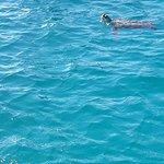 Foto de Westwater Adventures Barbados