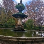 Fotografia de Jardim Botanico