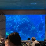 Foto de Coral Reef Restaurant