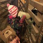 Feeding a calf.