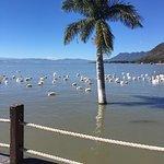 Photo of Romantic Lake Chapala