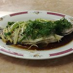 Steamed Tilapia with Ginger and Green Onions