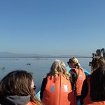 We had an amazing time during our Boat Ride at Lake Naivasha.