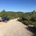 Somewhere between Almiral De La Font and Olivella