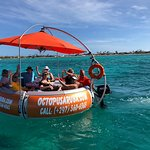 Rent a boat with Octopus Aruba