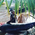 #AKFISHINGTRIPMOOREA #CAPTAINFRY #FISHERMANFRY #YELLOWFINTUNA #MOOREA #FISHING #FRENCHPOLYNESIA #2018