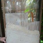 Les bouteilles sont liées et recouvertes d'emballage Tetrapak, puis recouverte de crépit. Le filage électrique et la plomberie passent dans les bouteilles.  Une toiture den Tetrapak dure environ 12 ans dans ce pays sans hiver.