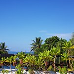 Cinnamon Bey, Beruwala suite & hotel grounds.