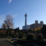Marine Tower照片