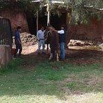Billede af Apupacha Horse Adventure