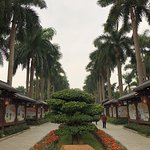 Photo of Jinhuacha Park