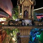 Siam Turmeric의 사진