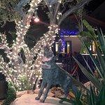 Billede af Blue Coyote Grill