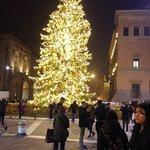 Praça à noite  com árvore de Natal