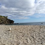 Foto de Playa de Benalnatura