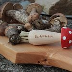 Brush for mushrooms by Les Houbeles
