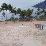 Foto de Praia do Flamengo