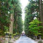 私が一番お気に入りなのは入口の大鳥居から始まるこの参道です。荘厳な雰囲気です。