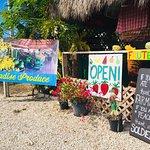 Zdjęcie Paradise Produce