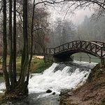 Foto van Vrelo Bosne