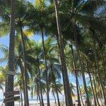 Foto van Samara Beach