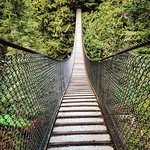 Foto de Lynn Canyon Suspension Bridge