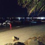 Billede af Palm Seaside