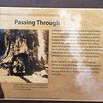 Photo of Mariposa Grove of Giant Sequoias