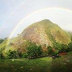 rainbow in the garden