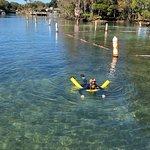 River Ventures Manatee Tour Center صورة فوتوغرافية