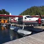 Fly into our lodge from Seattle with Northwest Seaplanes. The flight to and from the lodge is nearly half way to Ketchikan, AK. The views are amazing and a great part of the whole Hakai Lodge experience.