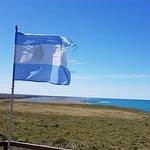 Foto de Península Valdes