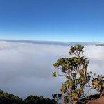 Φωτογραφία: Kalalau Lookout