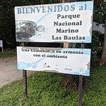 Las Baulas National Marine Park Foto