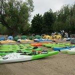 Фотография Okanagan Beach Rentals