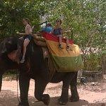 Nature Tours @ Sigiriya