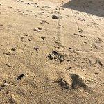 Foto de Maenam Beach