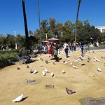 Fotografie: Plaza de America