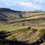 Billede af Val d'Orcia