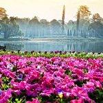 Maymyo Botanical Garden (National Kandawgyi Park) Foto