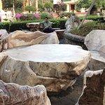 صورة فوتوغرافية لـ حديقةصخرةالمليون سنة ومزرعة التماسيح