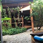 Bamboo Sushi Clubの写真